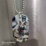 Trinidad Signs Chain-DogTags